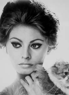 Mara with Cat (Sophia Loren)